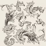 Collection of vector vintage swirls for design Royalty Free Stock Images