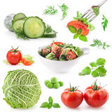 Collection on vegetable Royalty Free Stock Image
