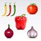 Collection of vegetables Stock Photos