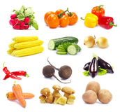 Collection Vegetables Stock Photography