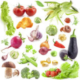 Collection of vegetables Royalty Free Stock Photos