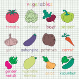 Collection of 12 Vegetables icons. Vegetables on background in a cage Royalty Free Stock Image