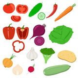 Collection of vegetables. Vegetables icons. Isolated objects on white background vector illustration