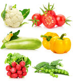 Collection of vegetables isolated on the white background.  Royalty Free Stock Image