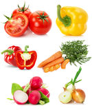 Collection of vegetables isolated on the white background Royalty Free Stock Images