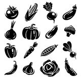Collection of vegetables set. Vector illustration Royalty Free Stock Image