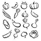 Collection of vegetables set. Vector illustration. Collection of vegetables set. Vector Stock Illustration