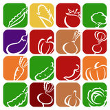 Collection of vegetables set. Vector illustration Royalty Free Stock Images