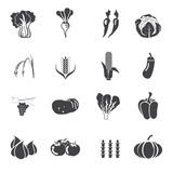 Collection vegetables vector set Royalty Free Stock Images