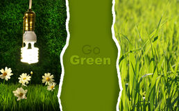 Collection verte de photos respectueuses de l'environnement Photos stock