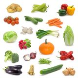 Collection végétale Photo libre de droits
