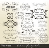 Collection of vintage calligraphic ornate labels stock illustration