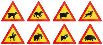 Collection of Warning Road Signs Used in Botswana Royalty Free Stock Photos
