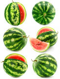 Collection of water melon fruits isolated stock photography