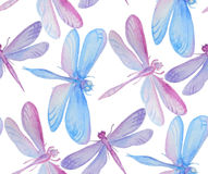 Collection of watercolor dragonflies. Stock Photo