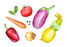 A collection of watercolor hand drawn vegetables. Traditional in Royalty Free Stock Photography