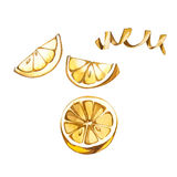 Collection of watercolor illustration on the theme lemon. Royalty Free Stock Images