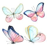 Collection of watercolor images of beautiful butterflies. A set of illustrations of an insect. Hand drawing. Isolated Clipart royalty free illustration