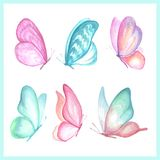 Collection of watercolor images of beautiful butterflies. A set of illustrations of an insect. Hand drawing. Isolated Clipart stock illustration