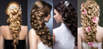 Collection of wedding hairstyles. Beautiful girls Royalty Free Stock Image
