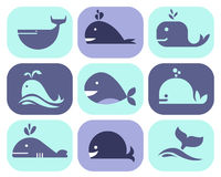 Collection of Whale Icons. And illustrations Royalty Free Stock Photo