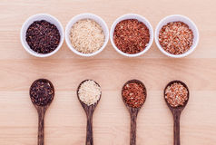 Collection of whole grain Thai jasmine rice. Royalty Free Stock Photography