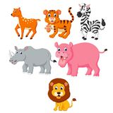 The collection of the wild animals in the different species vector illustration