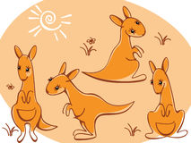 Collection wild animals. kangaroos. Stock Photo