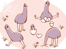 Collection wild animals. ostriches. royalty free illustration
