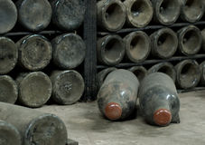 Collection wine. In cellars for judges of a drink Stock Photo
