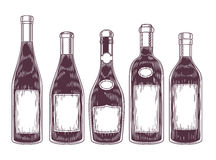Collection of wine bottles. Engraving style design Stock Photography