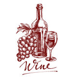 Collection wine hand drawn vector llustration sketch Stock Image