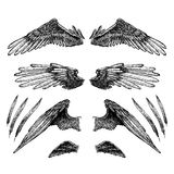 Collection of wings for your design Royalty Free Stock Photography