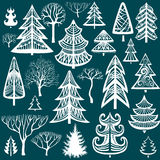 Collection of winter trees Stock Photography