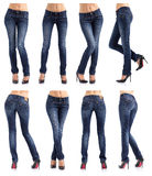 Collection of women's jeans in different poses Royalty Free Stock Photo