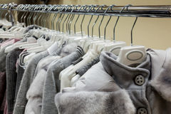 Collection of women's winter clothes Stock Image