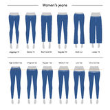 Collection of  womens jeans Royalty Free Stock Photography