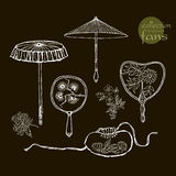 Collection womens old fans and umbrellas. Vector Royalty Free Stock Photos
