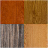 Collection of wood background Royalty Free Stock Photo