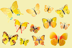 Collection Of Yellow Fantasy Butterflies. Collection Of  Yellow Fantasy Butterflies Royalty Free Stock Photo