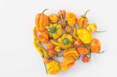 A collection of yellow and orange chilis, Royalty Free Stock Photo
