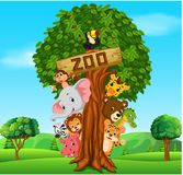 Collection of zoo animals with guide. Illustration of collection of zoo animals with guide Stock Photo
