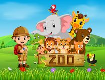 Collection of zoo animals with guide. Illustration of collection of zoo animals with guide Stock Images