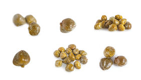 Collections of capers  isolated Stock Photography