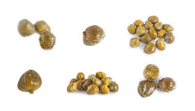 Collections of capers  isolated Stock Photo
