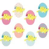 Collections d'oeufs de poussins de Pâques illustration stock