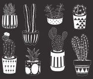 Collections de cactus de tableau Photo stock
