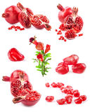 Collections of Pomegranate fruits. Isolated on white background stock photo