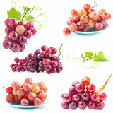 Collections of Red grape Stock Photo