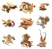 Collections of Spices. With Cinnamon Sticks, Anise Stars, Peppercorn, Chili Peppers, Vanilla, Various Dried Nuts and Some Scented Pods isolated on white Stock Photography